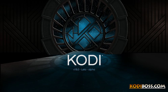How-to-install-add-ons-on-kodi-18-leia