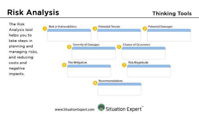 Situation Expert Risk Analysis