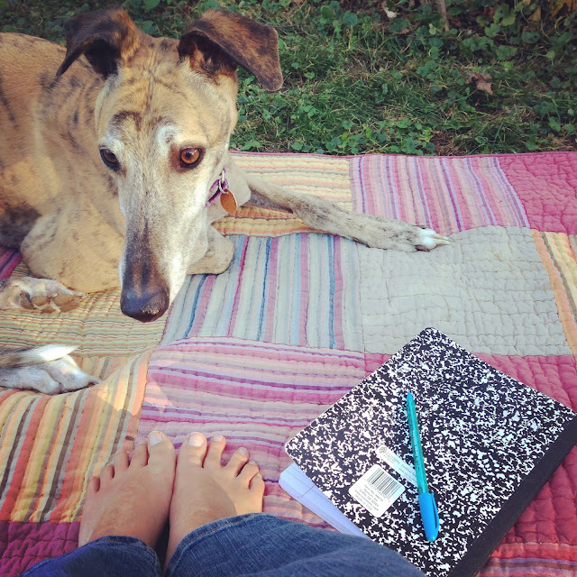 autumn, greyhounds, barefoot, Anne Butera, My Giant Strawberry