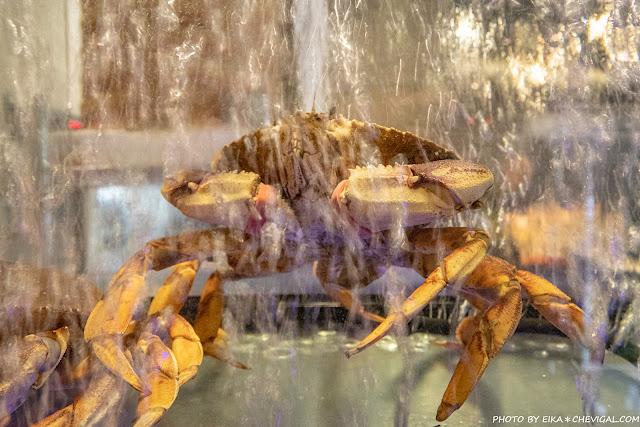 MG 2524 - 熱血採訪│海大蛤味噌湯,整碗的用料非常大方!台中當月壽星鮭魚三重奏免費吃!
