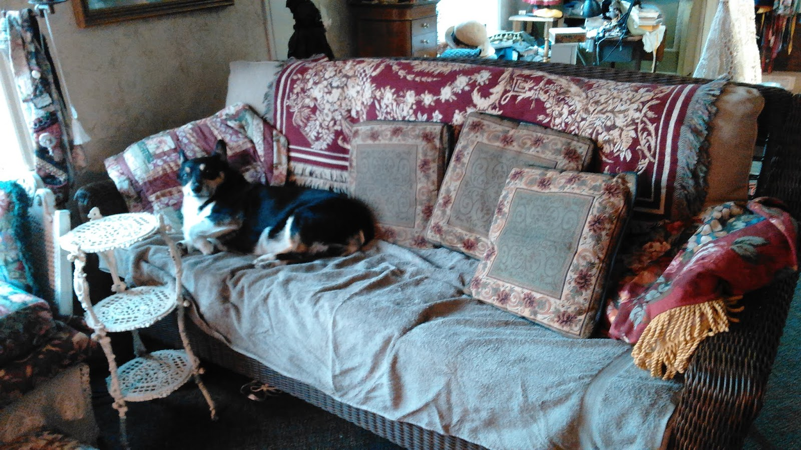 Remarkable Olderrose Tough Being The Only Dog Bralicious Painted Fabric Chair Ideas Braliciousco