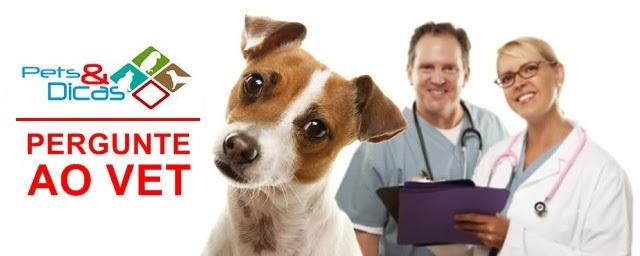 Perguntas para o Médico Veterinário