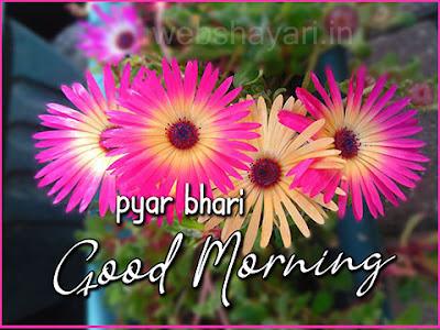 good morning images downloaf flower osm good morning status