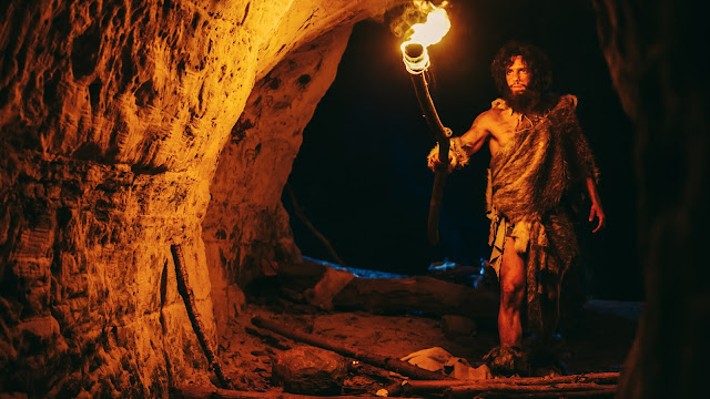Exploring how Neanderthals caught birds in caves for food
