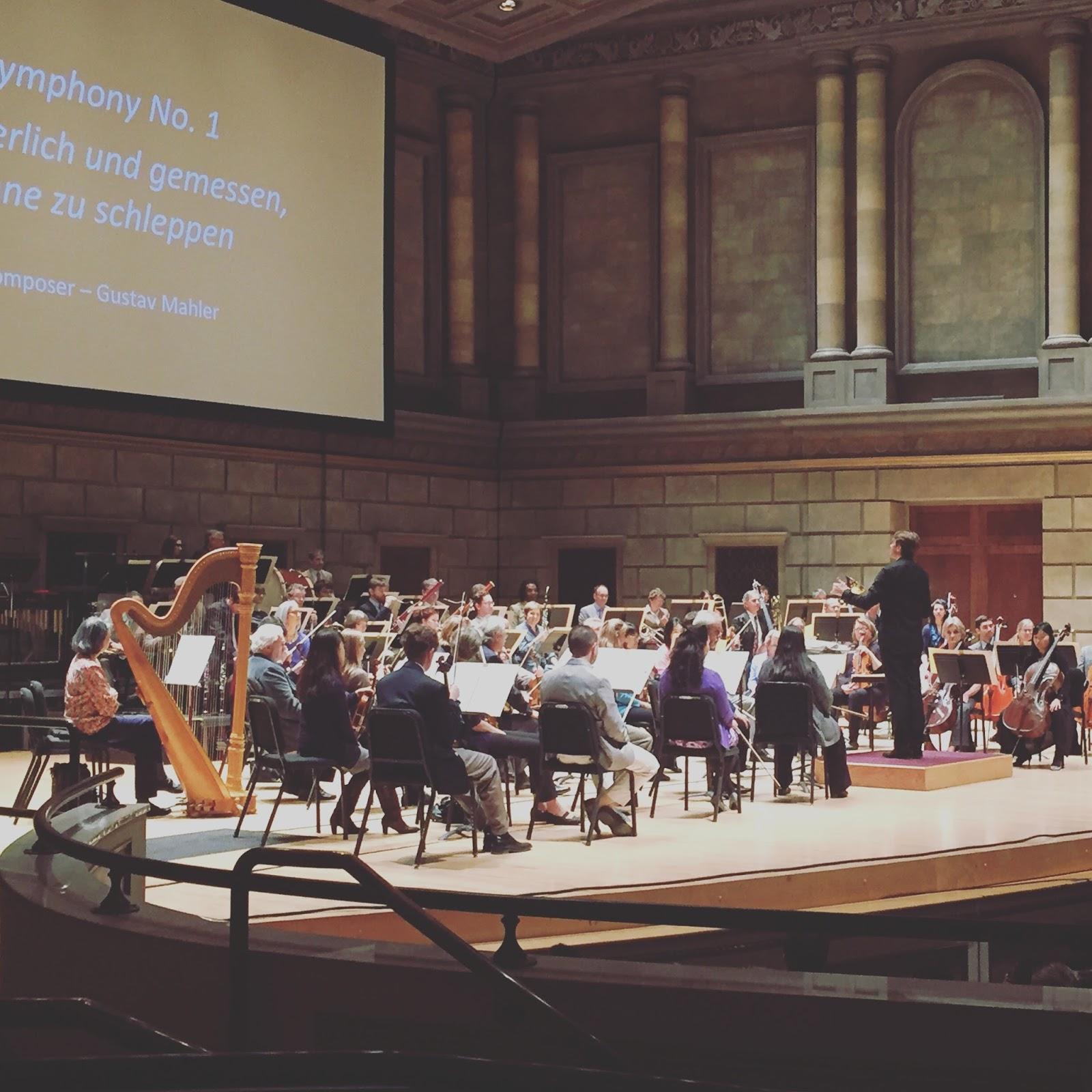 classical music concert essay
