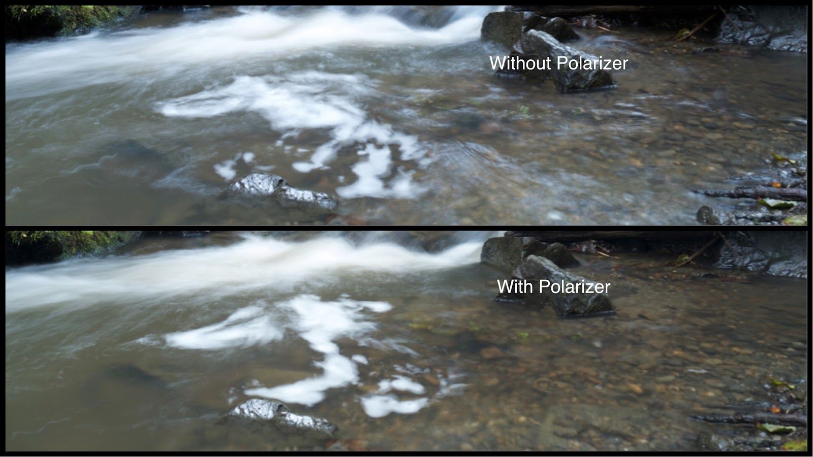 With and Without Crops for Polarizer