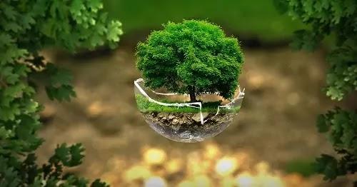 Pengertian Lingkungan Manajerial