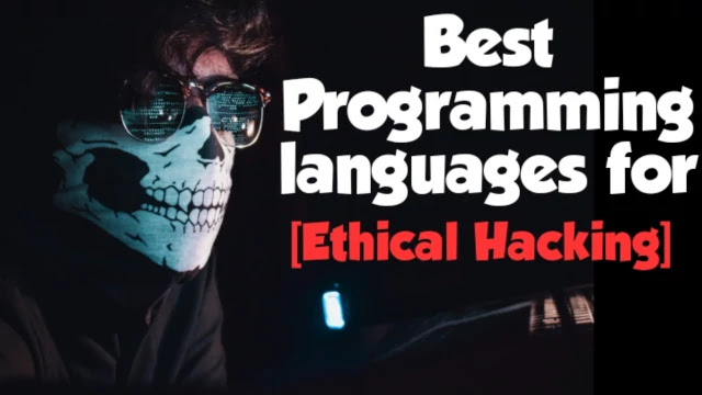 best-programming-languages-for-hacking