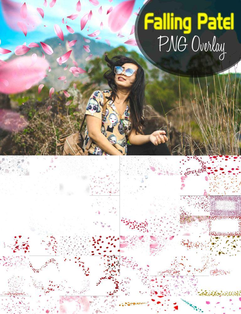 rose falling png, falling flowers png hd, rose petals png, falling petals gif transparent,