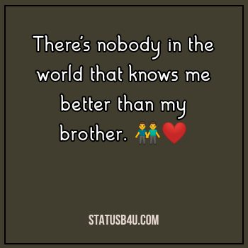 250 Brother Status Quotes Captions Best Brother Love Status