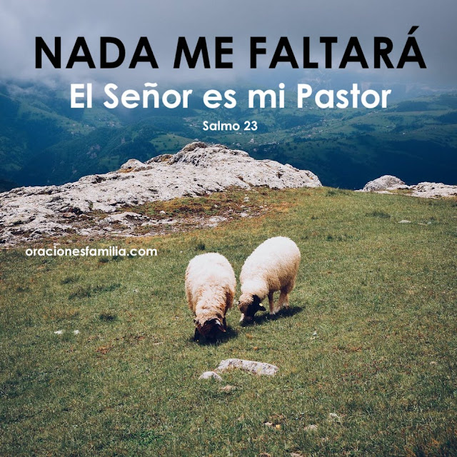 frases Jehova es mi pastor nada me faltara imagen con ovejas en montaña