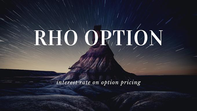 Rho Option Greek