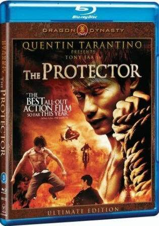 The Protector 2005 BluRay Hindi 350MB Dual Audio 480p Watch Online Full Movie Download bolly4u