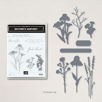 Stampin Up nature's harvest bundle for card making and scrapbooking