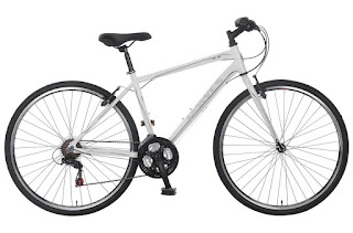 Stolen Bicycle - Dawes Discovery 101