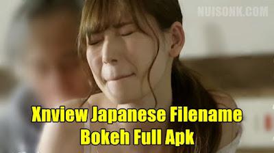 Xnview Japanese Filename Bokeh Full Apk