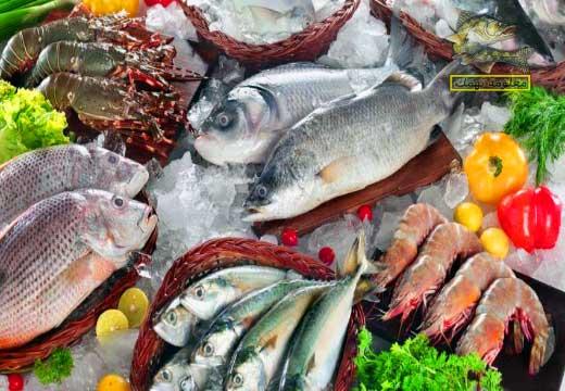 أفضل أنواع السمك للأكل في الخليج