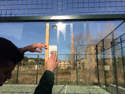 Pegatinas para los cristales para evitar el impacto de las aves
