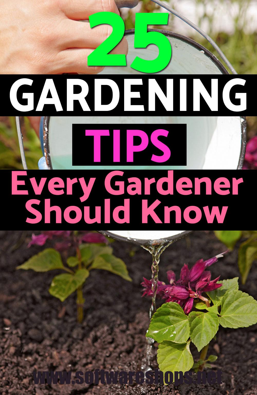 25 best gardening tips