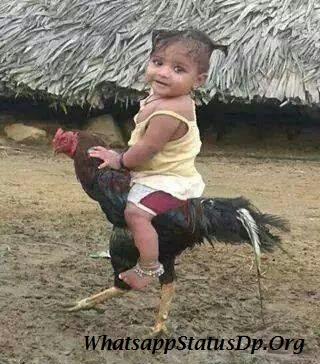 dekh-bhai-whatsapp-dp-funny-images-dekh