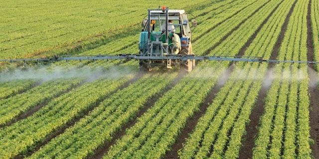 Tipos de abonos para los cultivos