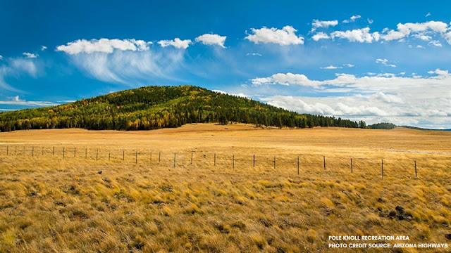 open fields and golden hills