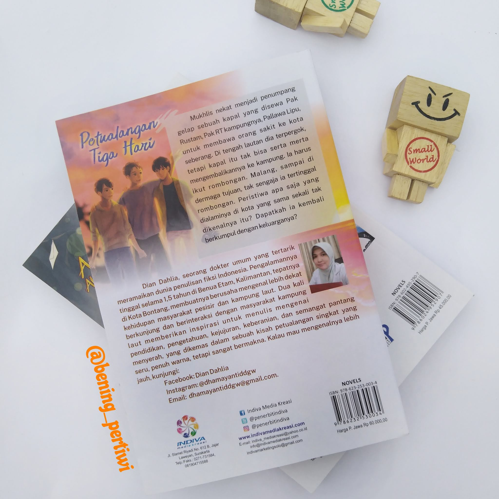 sampul belakang novel petualangan tiga  hari