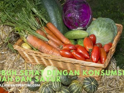 Tubuh Sehat dengan Konsumsi Buah dan Sayur
