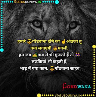 Gondwana Attitude Status Shayari In Hindi 2021, हमारे 😎गोंडवाना होने का ☝️अंदाजा तू क्या लगाएगी 👧पगली,  हम जब 🏕️गांव से भी गुजरते हैं तो 👭लडकियां भी कहती हैं,  भाड़ में गया काम, 😎गोंडवाना साहब राम राम।