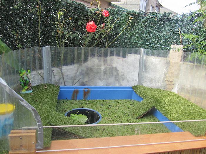 Mi jardin y mi huerto estanque de tortugas for Estanque con plastico