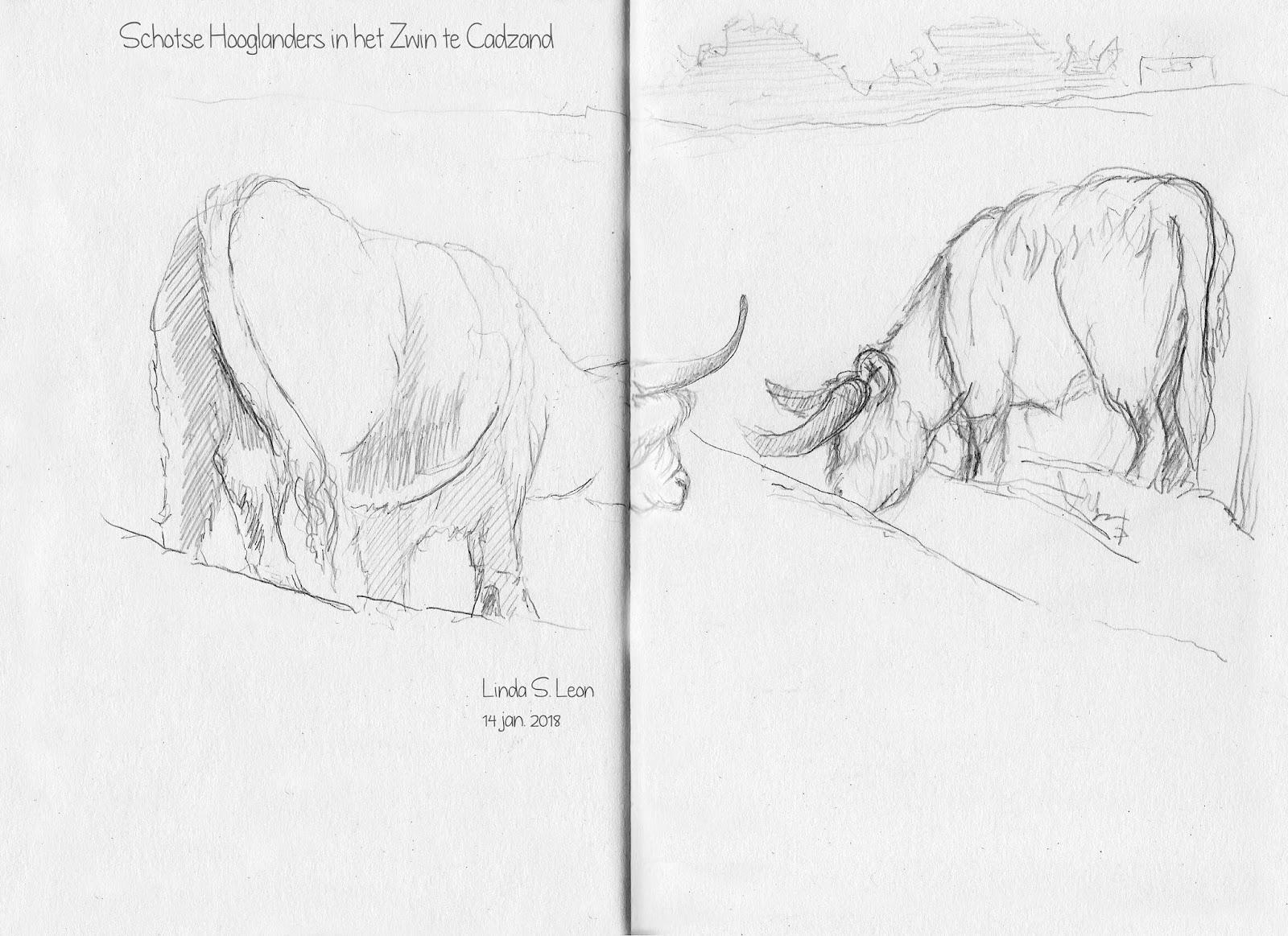 Schotse Hooglanders door Linda S. Leon