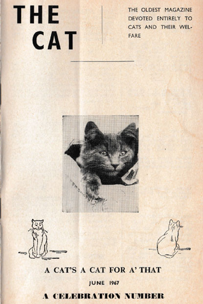 The Cat magazine June 1967