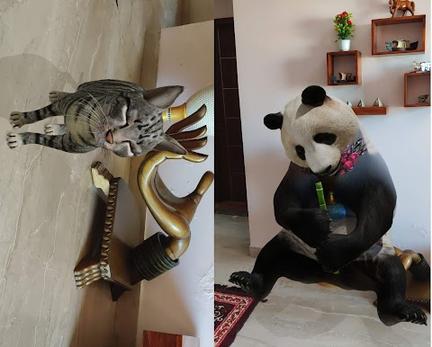 Google 3D Animals: How to watch Tiger, Panda, Dog and more animals in 3D in your room