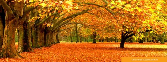 Fall Desktop Wallpaper With Sunflowers Capas Para Facebook Natureza 1 Capa Para Facebook