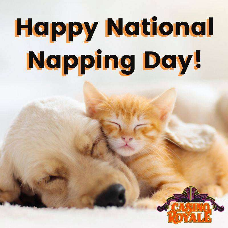 National Napping Day Wishes Sweet Images