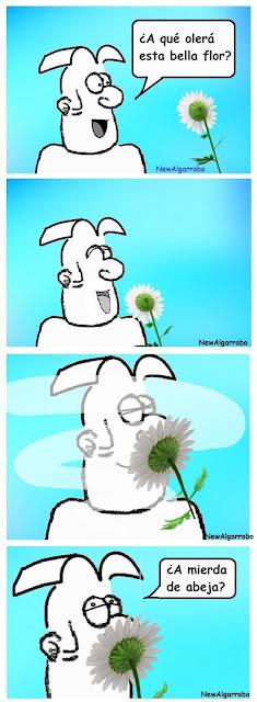 chiste de flores