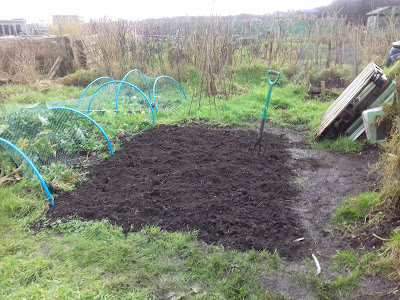 Allotment Growing - Preparing Beds