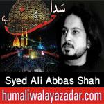 http://www.humaliwalayazadar.com/2016/10/syed-ali-abbas-shah-nohay-2017.html