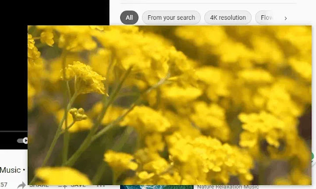 Cara Mengaktifkan Mode Picture in Picture Browser Microsoft Edge-3