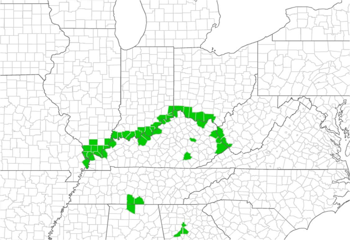 Illinois Invasive Species Awareness Month: Reporting