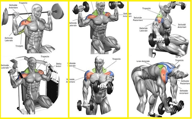 Shoulder Workout For BIG FULL Shoulders - Gym Workout