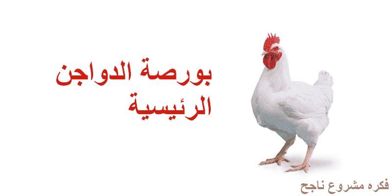 سعر الدواجن اليوم في بورصه الدواجن