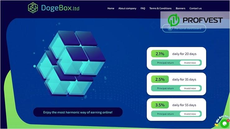 DogeBox LTD обзор и отзывы HYIP-проекта