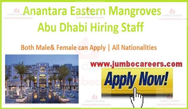 Recent Abu Dhabi jobs,