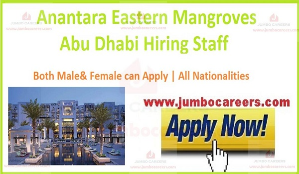 Anantara Eastern Mangroves Abu Dhabi Jobs 2020 Walk In Interview
