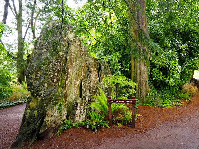 Rock Close, Blarney Castle, County Cork, Ireland