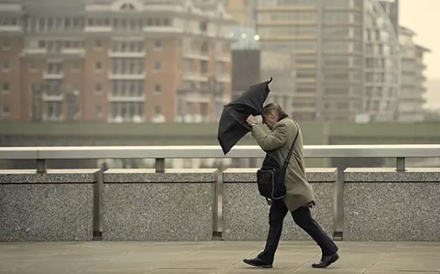 У Києві та області очікуються штормові пориви вітру. Рятувальники попередили про небезпечну погоду