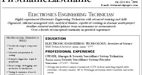 Sample Resume Of Entrepreneur - Costumepartyrun