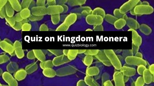 Kingdom Monera Quiz