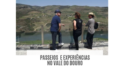 Vista panorâmica no Vale do Douro